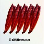五條裝鰻魚